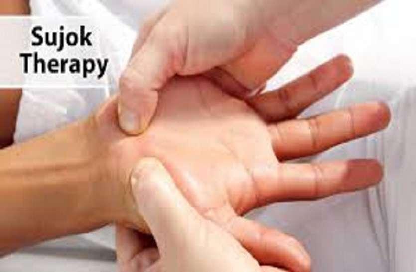 सुजोक थैरेपी सर्दी-जुकाम में कारगर चुंबक, बीजों से होता मरीजों का इलाज