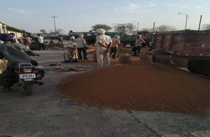 समर्थन मूल्य पर चना बेचने किसान बिनाई कर तेवड़ा कर रहे अलग, करनी पड़ रही मशक्कत