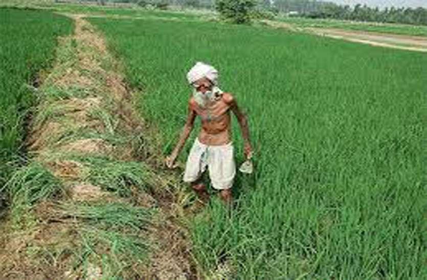 प्रदेश के किसानों को सरकार देगी सम्बल