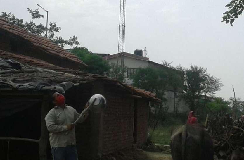 टिड्डियों का दूसरा झुंड रीवा जिले के कई हिस्सों में पहुंचा, लोगों ने भगाने इन तरीकों को अपनाया