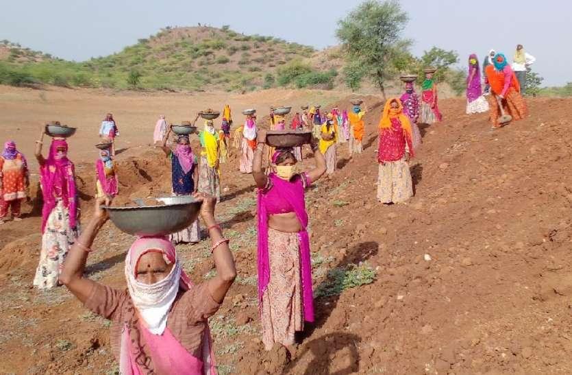 महात्मा गांधी नरेगा योजना : सौ दिन रोजगार उपलब्ध करवाने में बूंदी जिला अव्वल