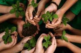 पांच जिलों में नर्मदा समेत अन्य नदियों के किनारे रोपे जाएंगे ढाई लाख पौधे
