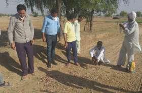दो दल लौटे, अब एक दल सक्रिय,सरकारी मदद नहीं मिली तो किसानों का जीना मुश्किल हो जाएगा