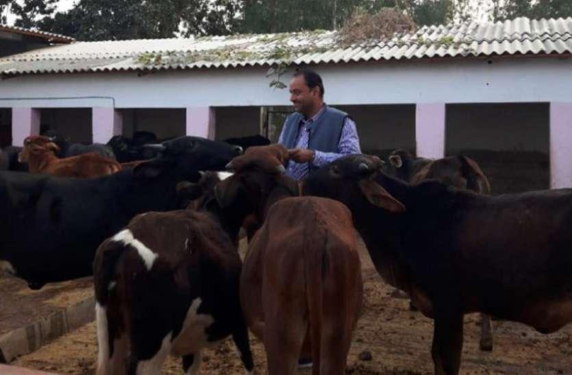 विश्व दुग्ध दिवस : एक डेयरी की सफलता देख पूरा गांव दुग्ध उत्पादन का बन रहा मॉडल, सफलता की ऐसी है कहानी