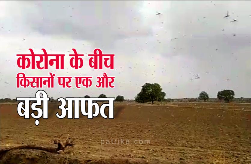 किसानों पर आई बड़ी आफत, चंद मिनिटों में फसल हो रही चौपट