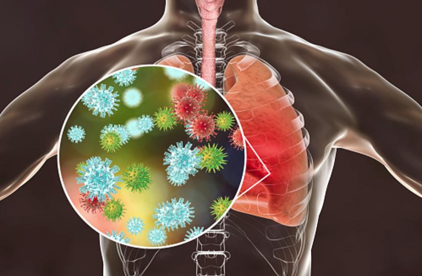 Coronavirus Update: Covid-19 संक्रमित का अब प्रोटिन से होगा इलाज