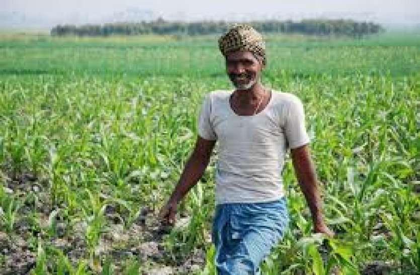 लॉक डाउन और मौसम की मार से परेशान किसानों के लिए आई यह बड़ी खुशखबरी, जानकार खिलेंगे चेहरे