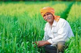 'अनलॉक' ने बढ़ाई किसानों की उम्मीद, लगातार नुकसान के बाद अब मिल सकता है मुनाफा