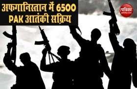 एक बार फिर पाकिस्तान बेनकाब.. अफगानिस्तान में जैश-लश्कर समेत आतंकी संगठनों के 6500 PAK आतंकवादी सक्रिय