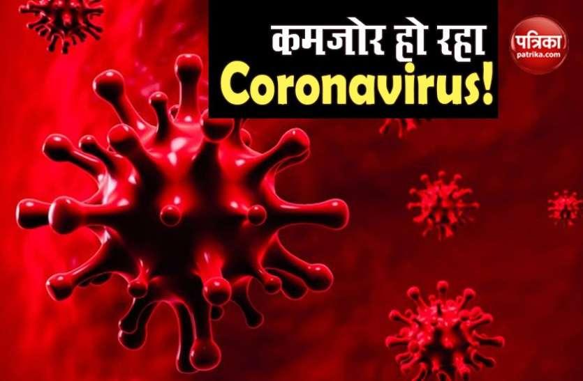 इटली डॉक्टर का दावा, कमजोर पड़ गया Coronavirus, WHO ने तुरंत जारी कर दी चेतावनी