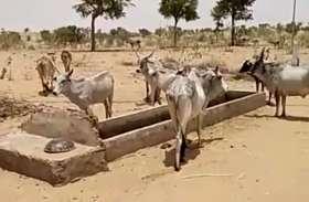... यंहा छह वर्षों से जलापूर्ति बंद, प्यास से व्याकुल हो रहे ग्रामीण
