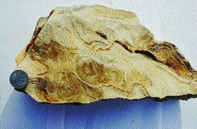 करोड़ों वर्ष पुरानी धरती की इन परतों में मनुष्य आगमन के कई राज छुपे