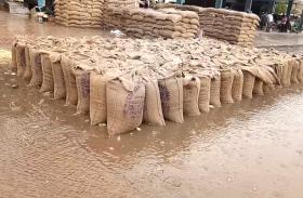 VIDEO : खुले में रखा था समर्थन मूल्य पर खरीदा गया 3 हजार क्विंटल चना, मूसलाधार बारिश में हुआ बर्बाद
