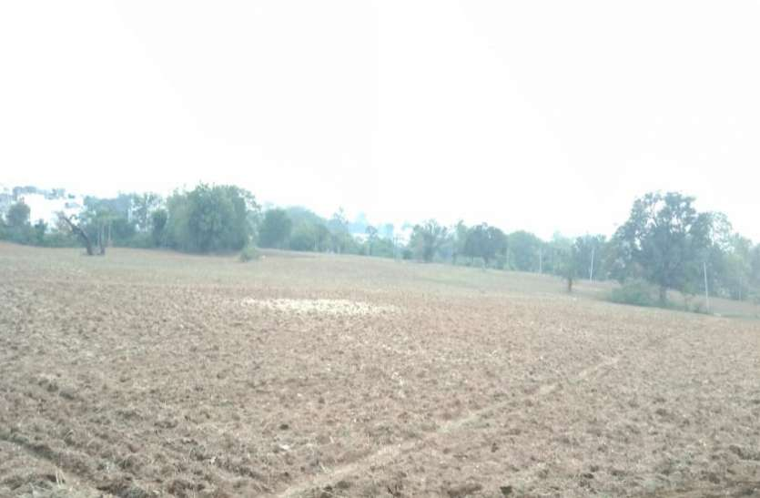 बीज की जांच रिपोर्ट आने से पहले ही किसान कर देते हैं खेतों में बोवनी