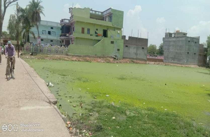 ये तालाब नहीं खाली प्लाट है, मोटे का मोहल्ला, ईदगाह के पीछे बीमारी का खतरा