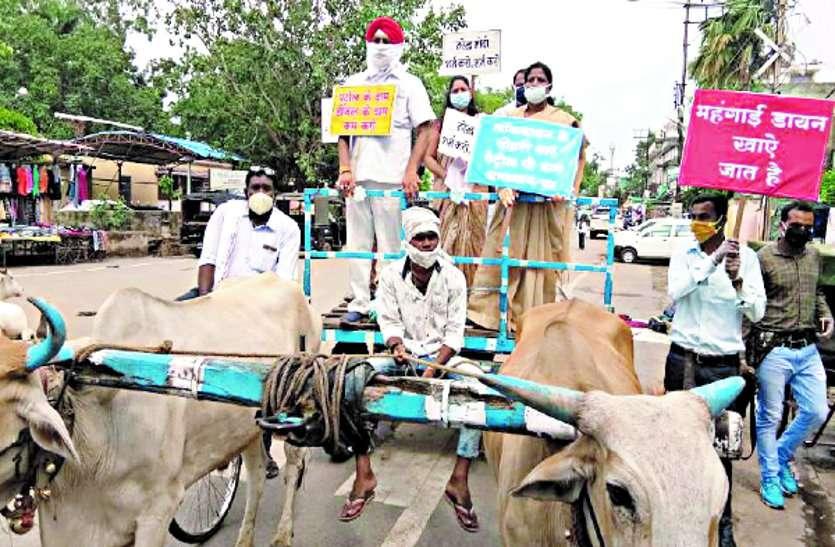 केंद्र की नीतियों के विरोध में कांग्रेस ने बैलगाड़ी में रैली निकाल किया अनूठा प्रदर्शन ...