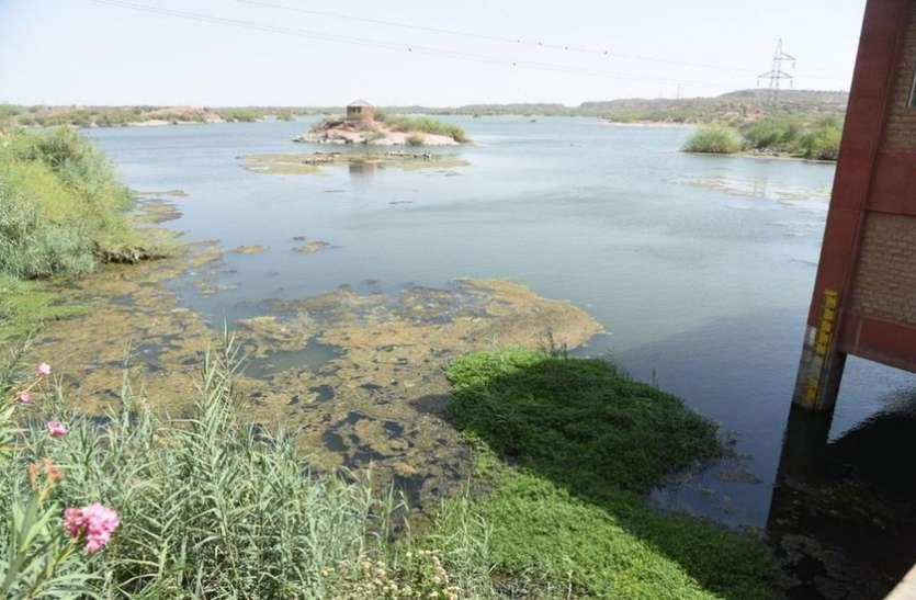 कायलाना-तख्तसागर में अब महज 10 दिन का पानी, 22 को नहीं होगी जोधपुर में पेयजल सप्लाई