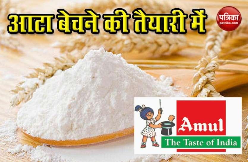 दूध, दही के बाद आटा बेचने की तैयारी में Amul, आशीर्वाद से लेकर Fortune को मिलेगी टक्कर