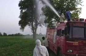 कवर्धा जिले में टिड्डी दल ने किया हमला, सकते में किसान, मारने में जुटी फायर बिग्रेड की एक दर्जन गाडिय़ां
