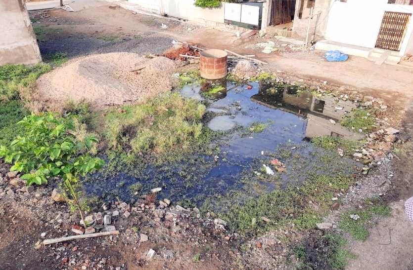 पानी की निकासी नहीं होने से वार्डों में फैल रही गंदगी, खाली प्लाटों में जमा हो रहा गंदा पानी
