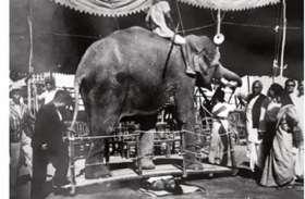 छाती पर हाथी का करतब दिखातीं थीं बंगाल की यह योगकन्या