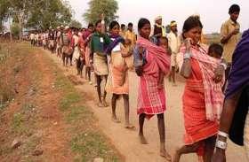 वन विकास निगम ने 16 बैगा आदिवासी परिवारों को थमाया गांव से बेदखली का नोटिस, अधिकारियों की करतूत से बेघर हुए वनवासी