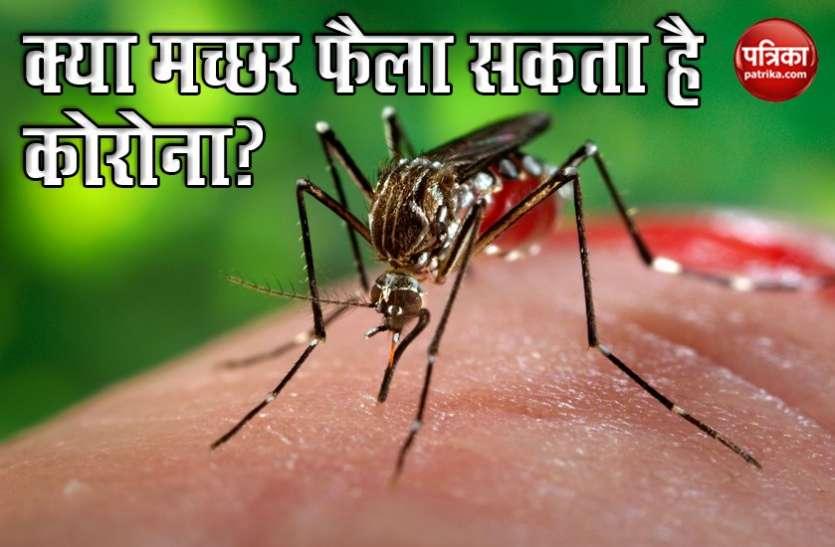 Coronavirus: विशेषज्ञों का दावा, मच्छरों से नहीं फैलता कोरोना का संक्रमण