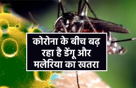 मानसून आते ही बढ़ने लगा डेंगू और मलेरिया का खतरा, इस तरह करें खुद का बचाव