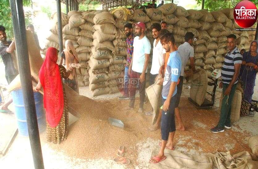सरकार ने चना की खरीद से खींचे हाथ तो यहां के किसानों को लगेगा 12 करोड़ का फटका