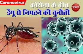 आसानी से पता लगाए कि आप Dengue के शिकार है या Corona के, जानिए क्या है इलाज