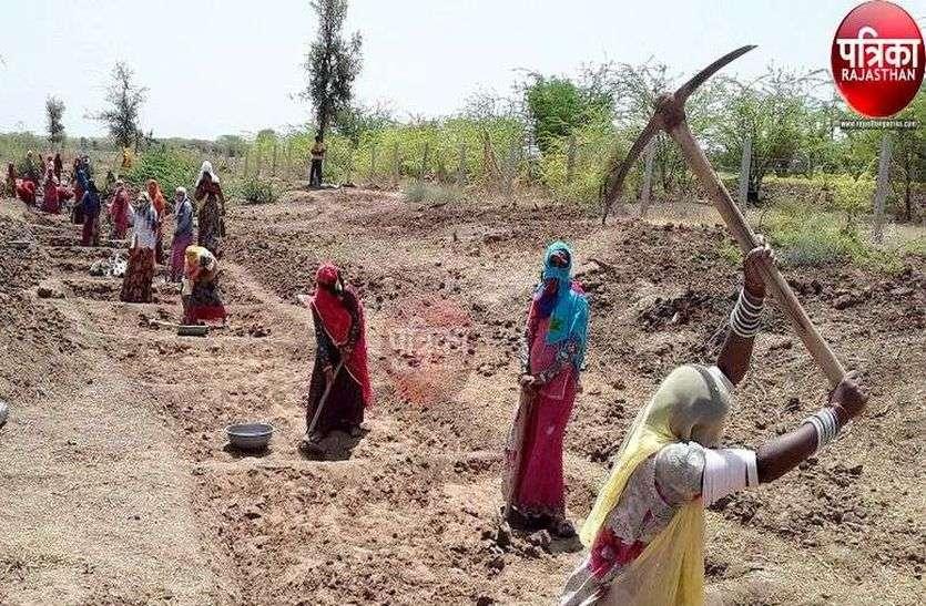 उपलब्धि : महिला मेट के मामले में सुमेरपुर जिले में अव्वल