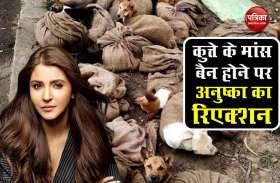 Nagaland में कुत्तों के मांस की बिक्री पर लगाया बैन, Anushka Sharma ने हाथ जोड़कर किया फैसले का स्वागत