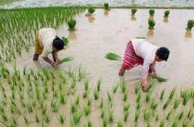 नारायणपुर कृषि विज्ञान केन्द्र में बायो टेक किसान हब की हुई शुरूआत