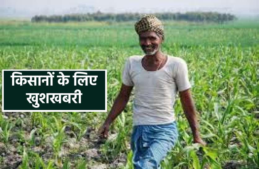 खुशखबरी : फसल बीमा पॉलिसी में हुआ बड़ा बदलाव, इस तरह मिलेगा किसानों को लाभ