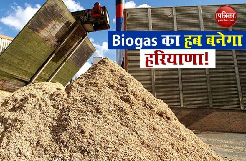 हरियाणा के हर घर में बनेगा गोबर गैस से खाना, सरकार ने शुरू की योजना