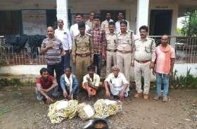 जंगली सूकर का शिकार करने के आरोप में चार आरोपी गिरफ्तार