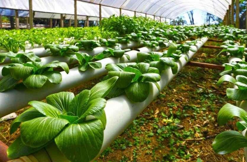 Agriculture  : नैनो आधारित कृषि इनपुट का होगा मूल्यांकन