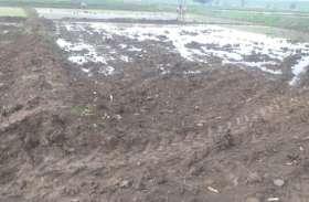 मजदूरों के नहीं मिलने से जिले में पिछड़ी धान की रोपाई