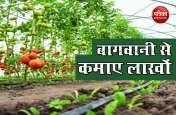 इन चीजों की Gardening से कमाए लाखों रुपए, साल भर में हो जाएंगे मालामाल, दूसरों को भी देंगे काम