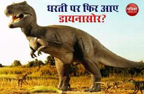 Patrika Fact Finder: क्या धरती पर हो चुकी है डायनासोर की वापसी? जानें सच
