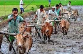 यूपी के किसानों के लिए एक बड़ी खुशखबरी, फसल का बीमा कराना है या नहीं अब किसान लेगा फैसला