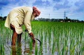 9.5 लाख किसान परिवारों को स्वास्थ्य बीमा, 24 जुलाई तक आवेदन के लिए यहां करें क्लिक