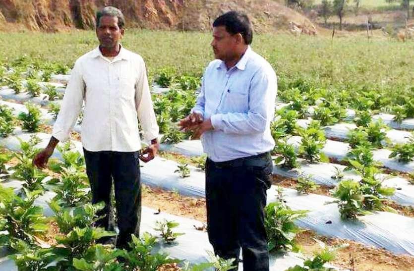 आर्थिक रूप से बीमार पड़ी कृषि समितियां