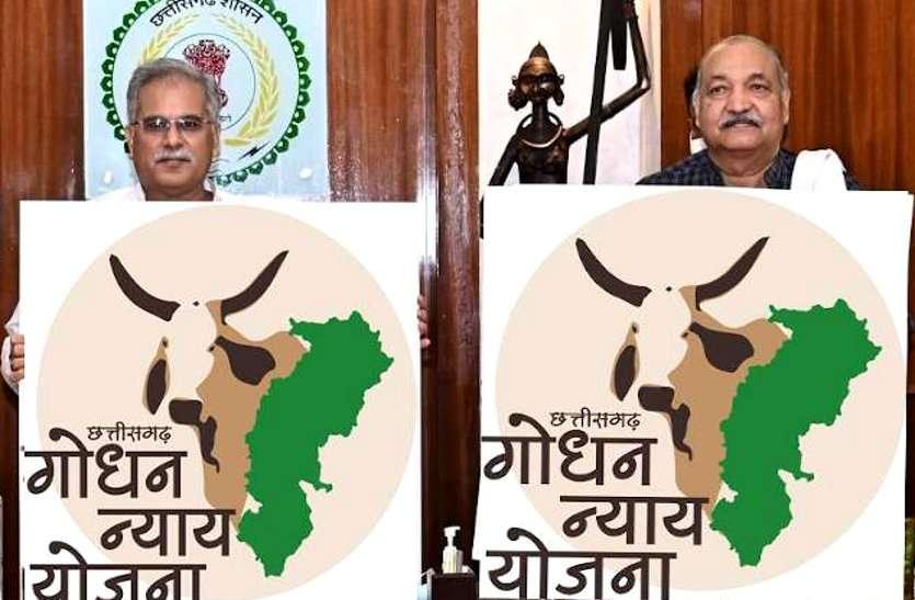 अपने निर्वाचन क्षेत्र पाटन से CM बघेल करेंगे 30 पंचायतों में गोधन न्याय योजना की 20 जुलाई से शुरूआत