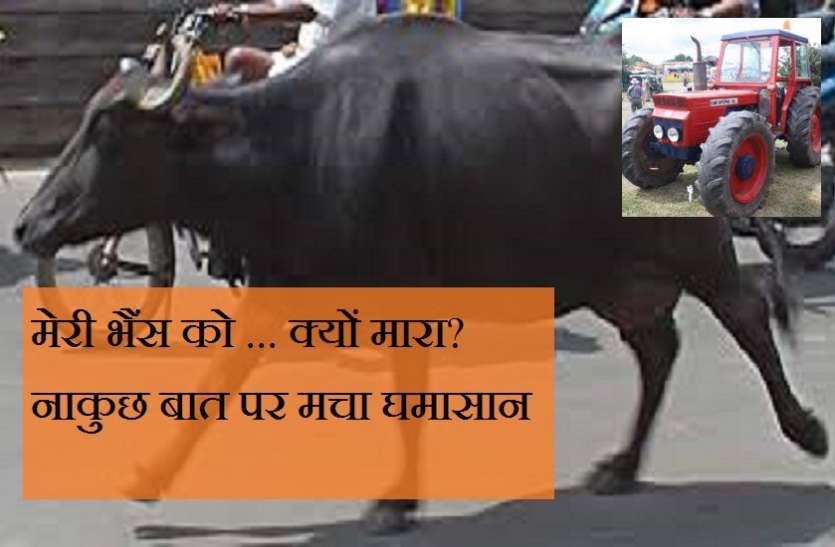 मेरी भैंस को ... क्यों मारा? नाकुछ बात पर बूंदी जिले के एक गांव में मचा घमासान