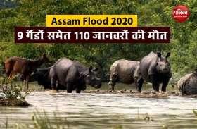Assam Flood की स्थिति गंभीर, अब तक 84 लोगों समेत 110 जानवरों की मौत