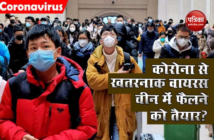 China में फैल सकता है Corona से भी खतरनाक Virus, जानिए इंसानों के लिए कितना खतरनाक?