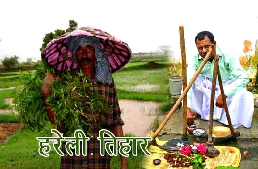 छत्तीसगढ़ के पारंपरिक हरेली त्योहार पर किसानों ने की कृषि औजारों की पूजा, गोवंश को खिलाया औषधि युक्त लोंदी