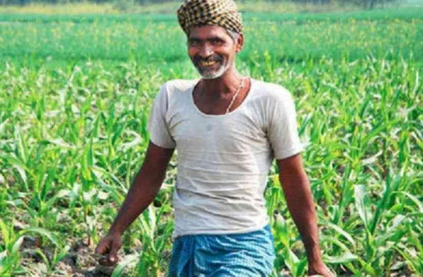 किसानों के लिए एडवाइजरी जारी : बताएंगे कैसे उपजाऊ जमीन तैयार कर सकेंगे
