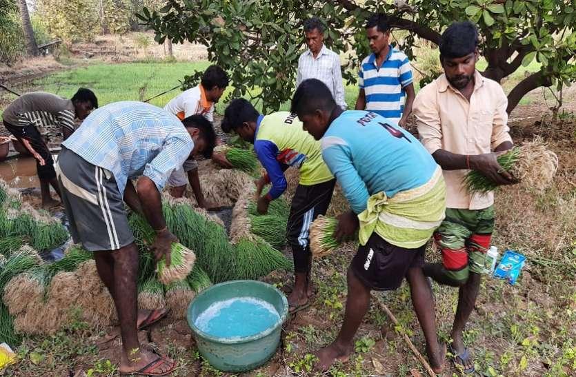 Mumbai News : प्राथमिक विद्यालय के शिक्षक का कमाल, सुर्खियों में नौनिहाल, अभिभावकों को रोजगार